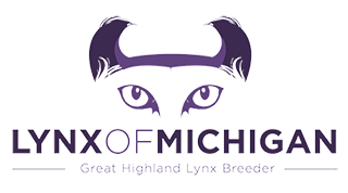 Highland Lynx of Michigan Logo